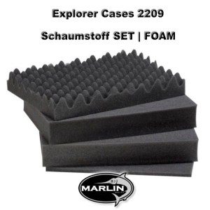 Explorer Cases 2209 Set FOAM