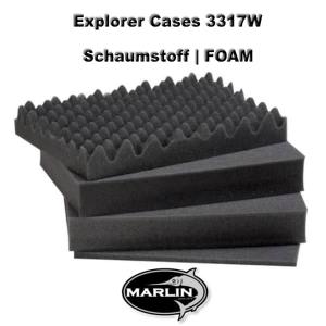 Explorer Cases 3317W FOAM