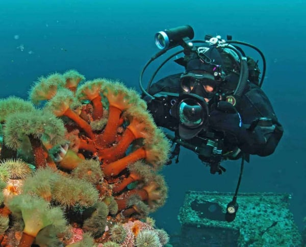 kraken at lord strascona kjpg 2