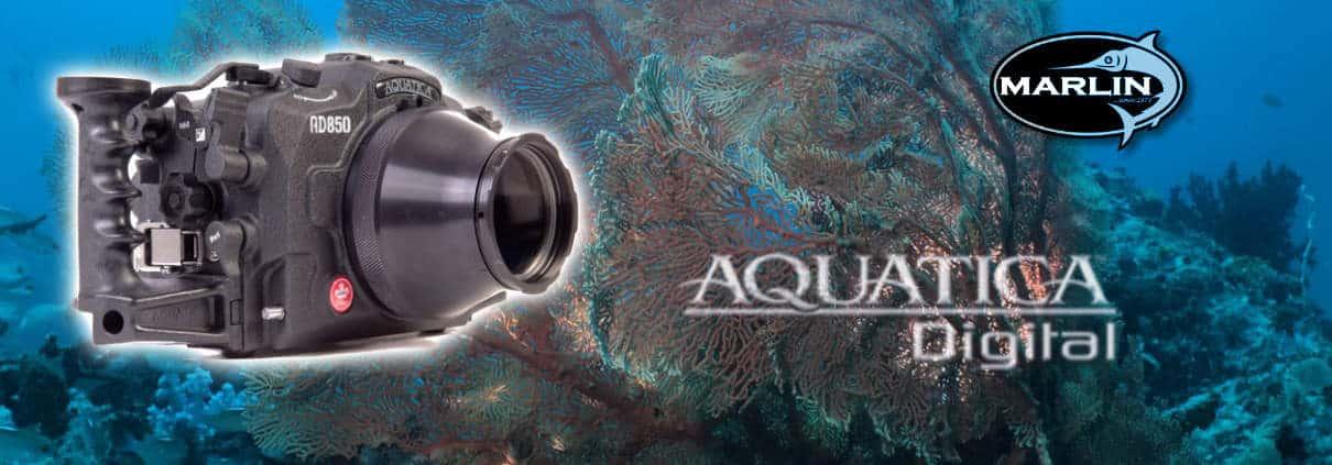 Aquatica Digital Kanada, Vertrieb Marlin