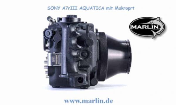 SONY A7RIII Aquatica 6