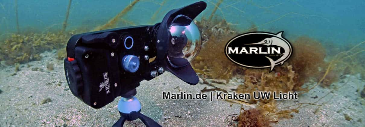 kraken online shop marlin